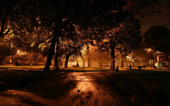 dark-park-night